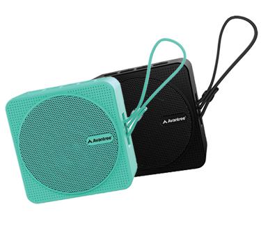 SP950 Speaker
